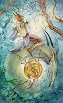 shadowscapes knight of pentacles