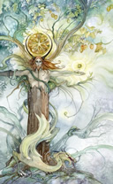 shadowscapes king of pentacles