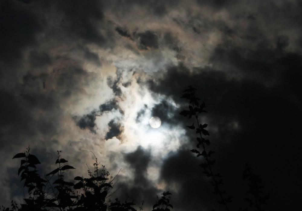 Los ciclos de la Luna y cómo trabajar con ellos