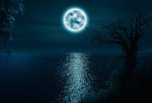 Magia Lunar 2019 01