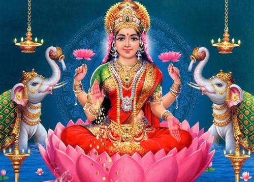 flor de loto lakshmi